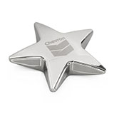 Silver Star Award Paperweight Under $10